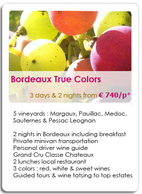 2 Days wine travel in Medoc and Sauternes wineries