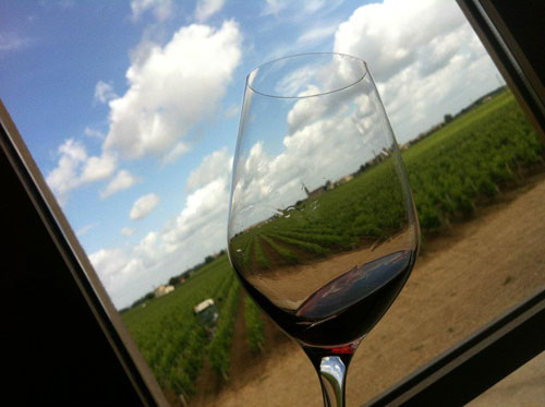 Sightseeing around Pomerol vineyards