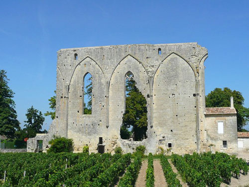 Sightseeing tour in St Emilion