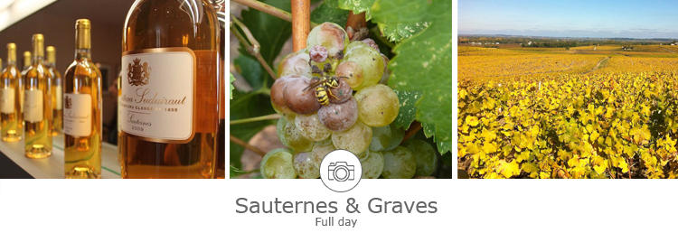 Day tour in Sauternes