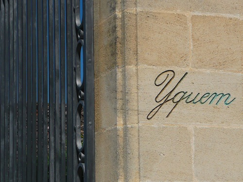 Tour and wine tasting at Chateau d'Yquem, First Growth Superior